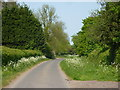 SP2290 : Hollyland near Shustoke by Andrew Hill