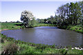SK4530 : Small pond near Great Wilne by David Lally