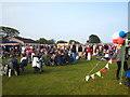 SW7828 : Royal wedding celebrations at Mawnan Playing Field by Rod Allday