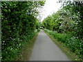 ST6167 : Whitchurch railway path, Bristol by Anthony O'Neil