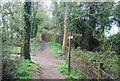 TQ0231 : Bridleway crosses the Wey South Path by N Chadwick