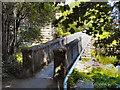 SD7910 : Irwell Footbridge by David Dixon