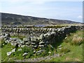 NR3044 : Ruins at Glenastle, Islay by Becky Williamson