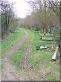 TQ3474 : Path, Camberwell Old Cemetery by Derek Harper
