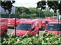 TL1495 : Little red vans by Richard Humphrey