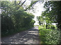 SJ4470 : Picton Lane looking south by Jeff Buck