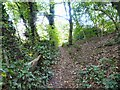 SJ9694 : Godley Hill Footpath by Gerald England