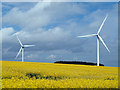 NZ1041 : Wind turbines beside the B6296 by Trevor Littlewood