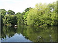 TQ3974 : The lake in Manor House Gardens (3) by Mike Quinn