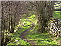 SD8998 : Footpath to Thwaite by Miss Steel