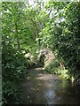 TQ4075 : The Quaggy River west of Weigall Road, SE12 (5) by Mike Quinn