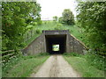 SK4568 : Farm track and footpath under the motorway by Andrew Hill