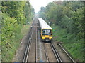 TQ4273 : Railway lines east of Mottingham station by Mike Quinn