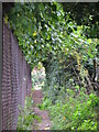 TQ4070 : Footpath north of Lawn Close, BR1 by Mike Quinn