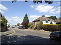TQ4294 : Rous Road, Buckhurst Hill by Stacey Harris