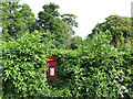 SK5141 : Strelley: village postbox by John Sutton
