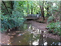 TQ4369 : The Kyd Brook by the southern end of Gosshill Road, BR7 (9) by Mike Quinn