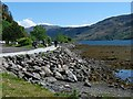 NG8825 : The shore of Loch Duich by Robin Drayton