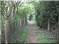 SU9994 : Chalfont St Giles: Permissive footpath to the Captain Cook Monument by Nigel Cox