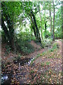 TQ4466 : The Kyd Brook - Main Branch, south of Eynsford Close, BR5 (4) by Mike Quinn