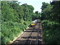 TQ3871 : Railway line south of Beckenham Hill by Malc McDonald