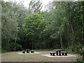 TL3703 : Picnic tables at Fishers Green by Stephen Craven
