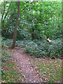 TQ4466 : Footpath in woodland southwest of Eynsford Close, BR5 by Mike Quinn