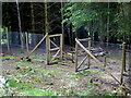 NN7423 : Game enclosure at Cluan Wood, Dunira by Anthony O'Neil