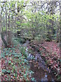 TQ4366 : The Kyd Brook - Main Branch, in Sparrow Wood (2) by Mike Quinn