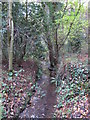 TQ4366 : The Kyd Brook - Main Branch, in Sparrow Wood (3) by Mike Quinn