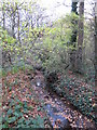 TQ4366 : The Kyd Brook - Main Branch, in Clay Wood (7) by Mike Quinn