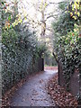 TQ4466 : Footpath south of Shepperton Road, BR5 (3) by Mike Quinn