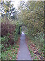 TQ4466 : Footpath west of Broadcroft Road, BR5 (2) by Mike Quinn