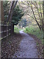 TQ4466 : Footpath west of Heath Side, BR5 by Mike Quinn