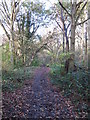 TQ4466 : Footpath towards Roundabout Wood by Mike Quinn