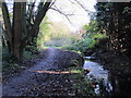 TQ4466 : The Kyd Brook - East Branch, west of Monks Way, BR5 (2) by Mike Quinn