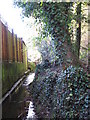 TQ4466 : The Kyd Brook - East Branch, west of St. Thomas' Drive, BR5 (2) by Mike Quinn