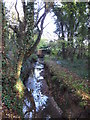 TQ4466 : The Kyd Brook - East Branch, on Gumping Common by Mike Quinn