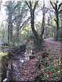 TQ4466 : The Kyd Brook - East Branch, on Gumping Common (2) by Mike Quinn