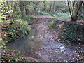 TQ4466 : The Kyd Brook - East Branch, on Gumping Common (6) by Mike Quinn