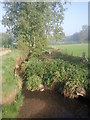 TQ4468 : Kyd Brook, Hawkwood Estate by Marathon