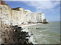 TV4898 : Cliffs at Seaford by nick macneill