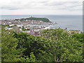 TA0387 : View to Scarborough Castle and headland by Pauline Eccles