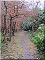 TQ4264 : Footpath in Lake Wood by Mike Quinn