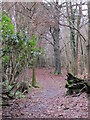 TQ4264 : Footpath in Lake Wood (4) by Mike Quinn