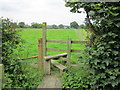 SJ4771 : Footpath to Dunham-on-the-Hill by Jeff Buck