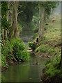 TL0937 : Stream nr Clophill by Dennis simpson