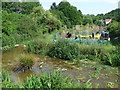Dist:0.7km<br/>A shallow stream near Chesham, with an allotment on the opposite bank.  Visible in the water in centre of the image is a plastic crocodile!