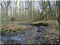 TL7907 : Stream at Woodhall by Roger Jones