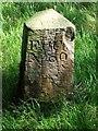NS8367 : Hillend Reservoir, marker stone No. 60 by Robert Murray